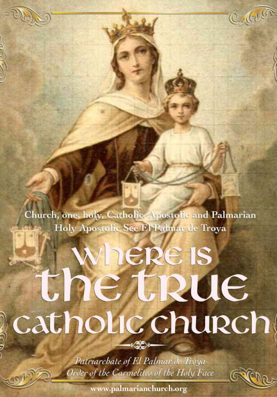 """<a href=""""https://www.palmarianchurch.org/wp-content/uploads/2018/11/where-is-the-true-church-english.pdf"""" title=""""Where is the True Church?"""">Where is the True Church? <br><br>See more</a>"""