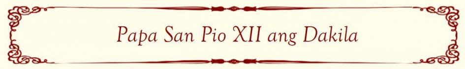 Pope Saint Pius XII Banner FL